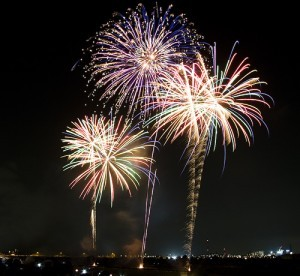 """Mark Levine's First Annual """"Fireworks on the Potomac"""" @ Mark Levine's Home 