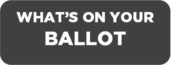 whats-on-your-ballot-button