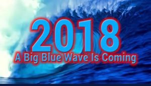Blue Wave VA 10 Canvassing in Sully @ Home of Lorraine Cross