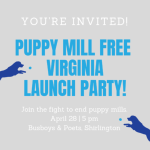Puppy Mill Free Virginia Launch Party! @ Busboys and Poets, Shirington